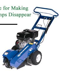 Where to find GRINDER, STUMP 13 HP in Prior Lake